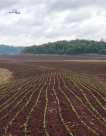 Fazenda à venda, 1407472 m² por R$ 16.284.800 - Zona Rural - Cascavel/PR