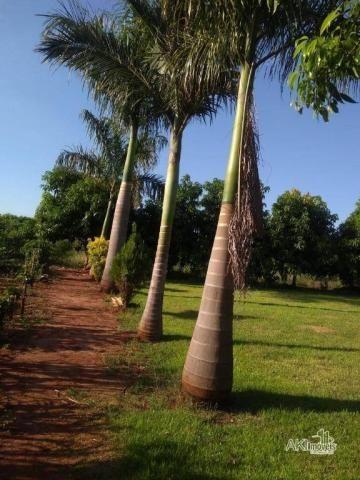 8046 | Chácara à venda em Munhoz De Melo, Munhoz De Melo - Foto 9