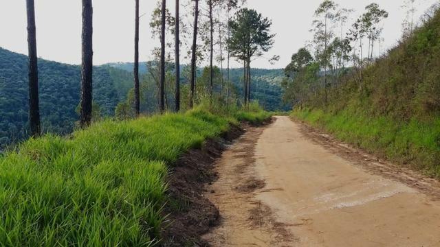 Terreno próximo de Araçariguama - Foto 4