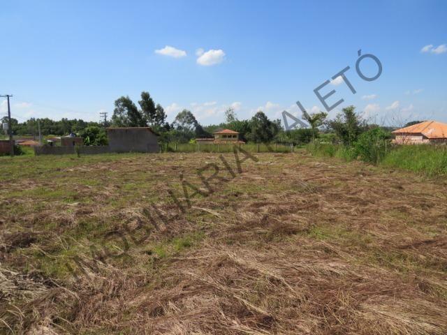 REF 909 Terreno 1000 m², escritura ok, 2 km da cidade e 300 mts do asfalto, Imob Paletó - Foto 4