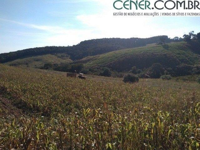2098/Sítio com 25ha - Excelente para plantio e criação de gado em Cruzília-MG - Foto 8