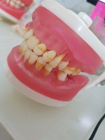 Manequim odontológico de periodontia