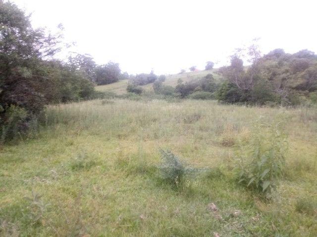 2 hectares! Sonho de Sitio! - Foto 7