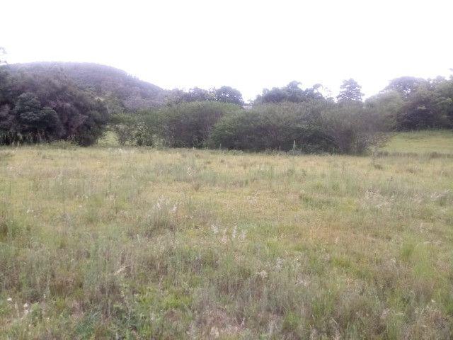 2 hectares! Sonho de Sitio! - Foto 2
