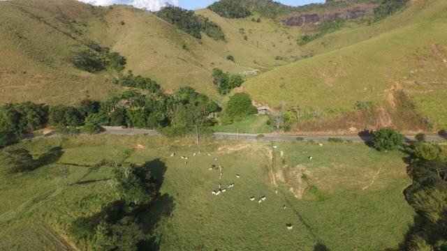 Pasto ao lado da RJ 153 Km 30,5 Volta Redonda