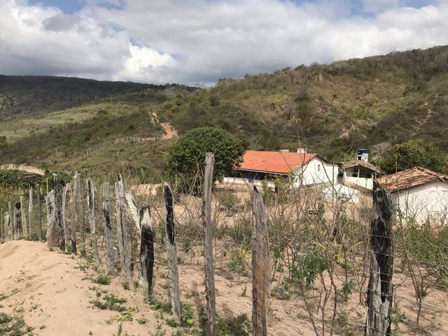 Fazenda em Minas - Foto 14