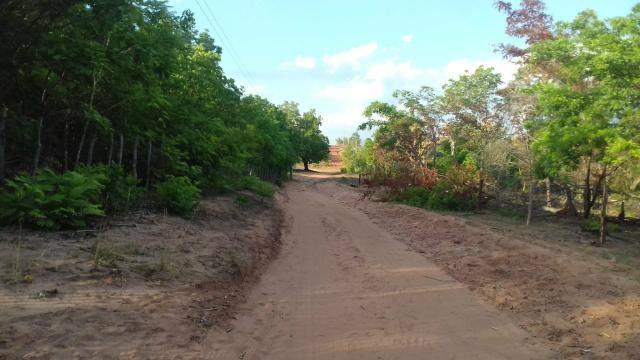 Vendo 2 dois sitio em Nazaria Teresina Piauí