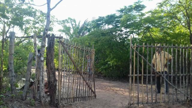Vendo 2 dois sitio em Nazaria Teresina Piauí - Foto 4