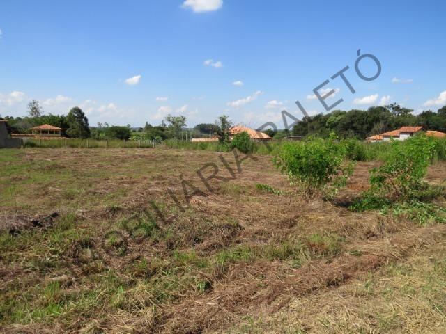 REF 909 Terreno 1000 m², escritura ok, 2 km da cidade e 300 mts do asfalto, Imob Paletó - Foto 5