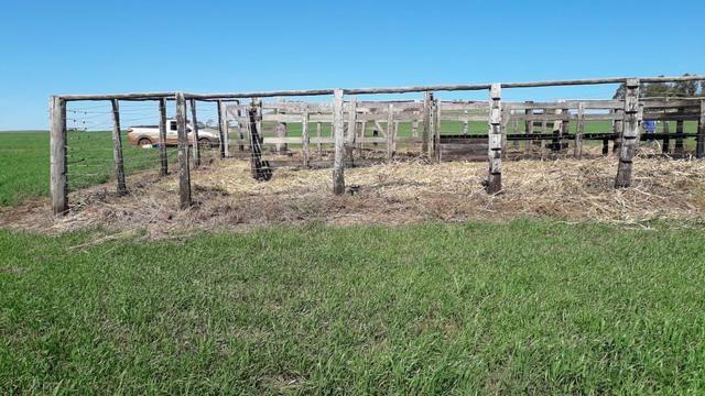 Vende-se ou permuta-se curral ( mangueira) para gado - Foto 4