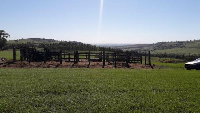Vende-se ou permuta-se curral ( mangueira) para gado - Foto 3