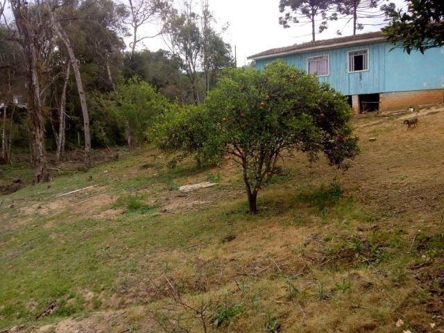 Vende-se chácara em Areia Branca - Mandirituba (cód. A355) - Foto 10