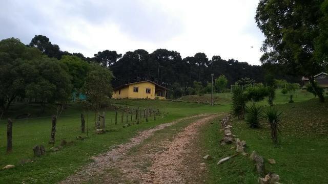 Chácara com 64.208m², com 2 casas a 4 km do Centro de Balsa Nova - Foto 3