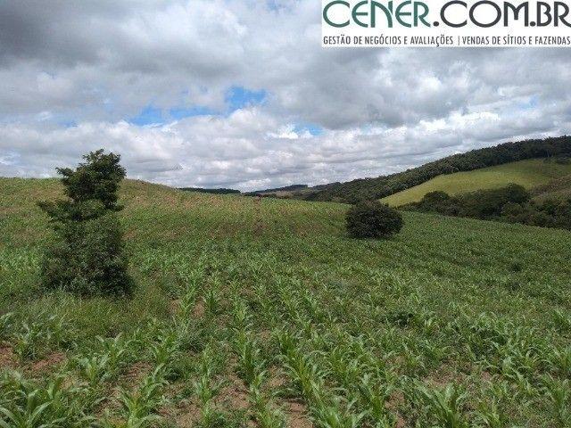 2098/Sítio com 25ha - Excelente para plantio e criação de gado em Cruzília-MG - Foto 9