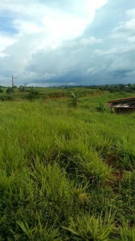 Terreno Savana QD50 LT23