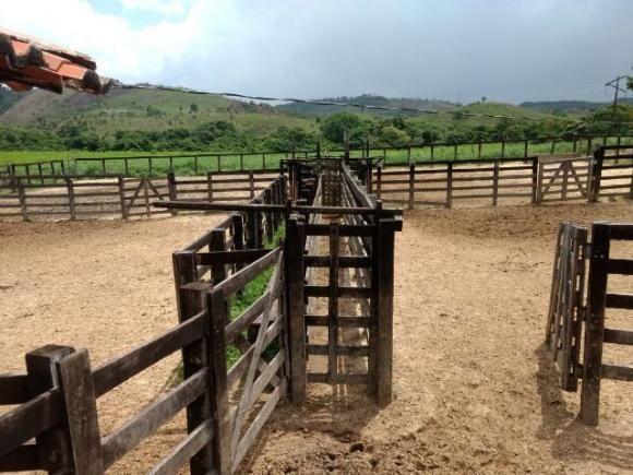 Fazenda pra 4 mil boi