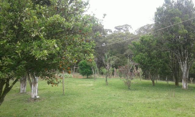 Vendo ou troco Chacara na Lapa por casa de menor valor em Curitiba ou Colombo - Foto 2