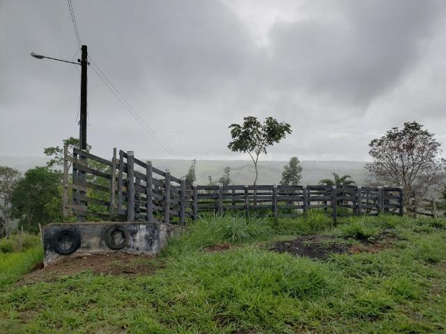 Fazenda ( Vendo ou Troco ) Propriedade Em Teotônio Vilela-AL - Foto 15