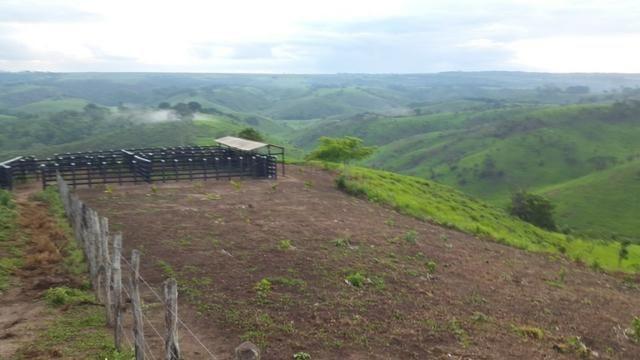 Fazenda ( Vendo ou Troco ) Propriedade Em Teotônio Vilela-AL - Foto 10