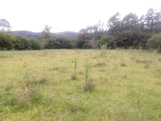 2 hectares! Sonho de Sitio! - Foto 8