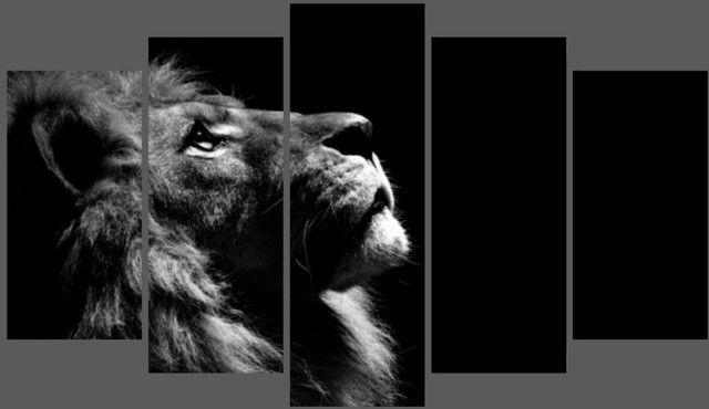 Quadro Decorativo leão - Foto 2