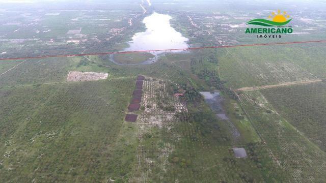 Fazenda 500ha - Foto 2