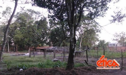Sítio à venda em Aguas lindas, Ananindeua cod:7684 - Foto 17
