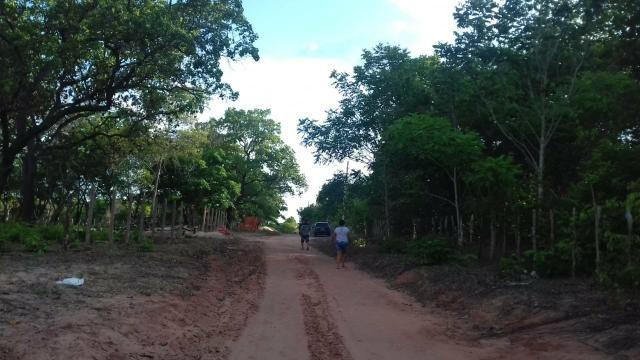 Vendo 2 dois sitio em Nazaria Teresina Piauí - Foto 6