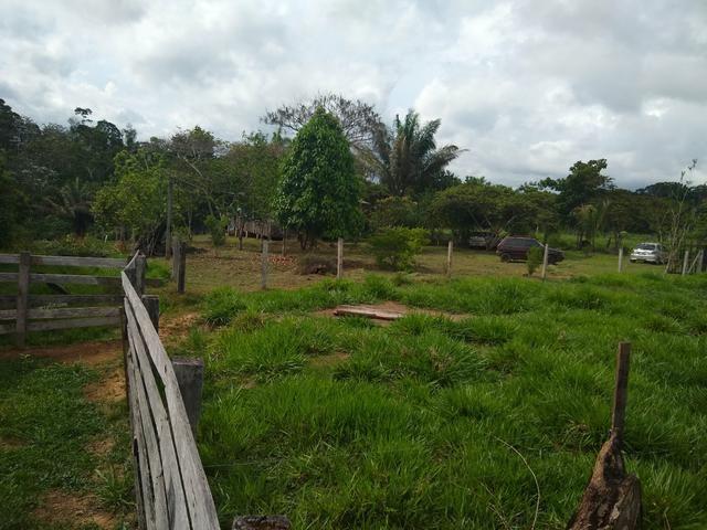 Vende-se chácara após o município do quinari 5 km, projeto Limeira ramal do calango - Foto 2