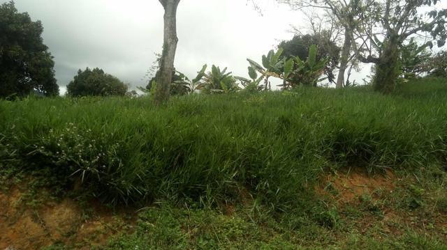 Vendo Fazenda Totalmente Produtiva - Foto 16