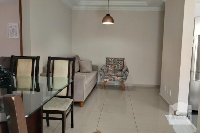 Apartamento à venda com 3 dormitórios em Caiçara-adelaide, Belo horizonte cod:264429 - Foto 2