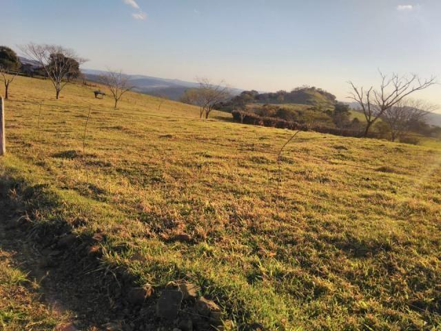 8271 | Fazenda à venda em ZONA RURAL, Cascavel - Foto 5