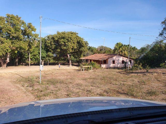 Faz 585 Alq planta os taiao 50 % até 300 Alq vale do Araguaia - Foto 6