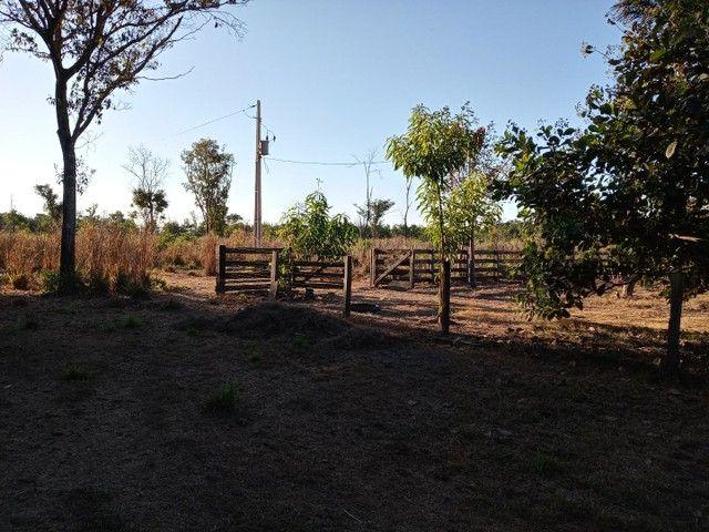 Fazenda a venda - Foto 2