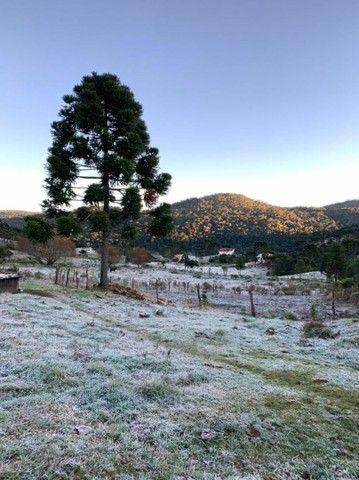 Sitio em Urubici, fazenda em Urubici, serra catarinense. - Foto 15