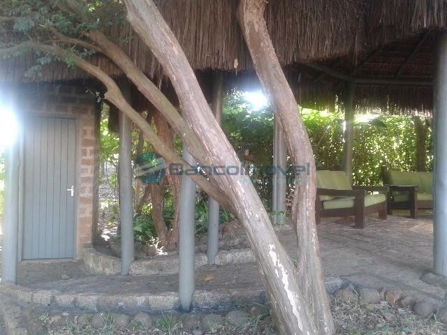 Chácara para alugar em Jequitibá, Paulinia cod:CH00036 - Foto 15