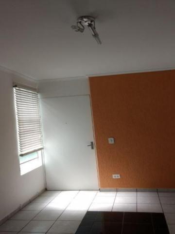 Apartamento à venda com 2 dormitórios em Vila padre manoel de nóbrega, Campinas cod:AP0616