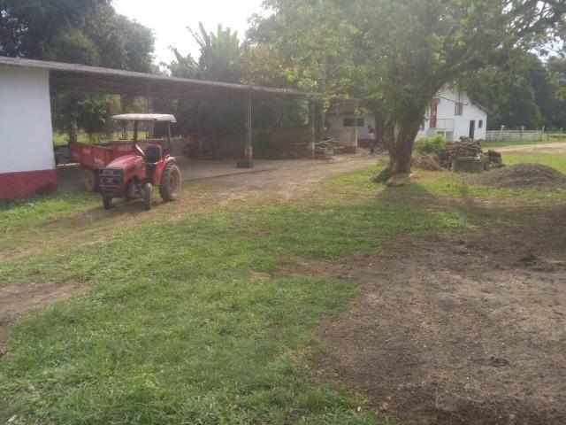 Linda fazenda em Cachoeiras de Macacu 20 alqueires oportunidade!!!! - Foto 5