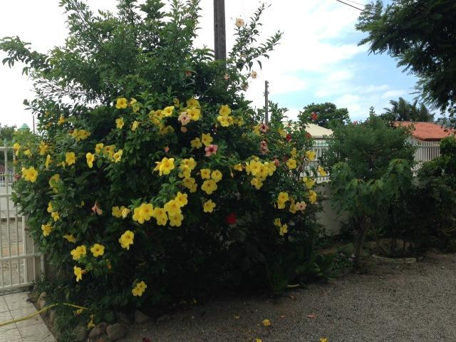 Alugo Casa - Foto 9