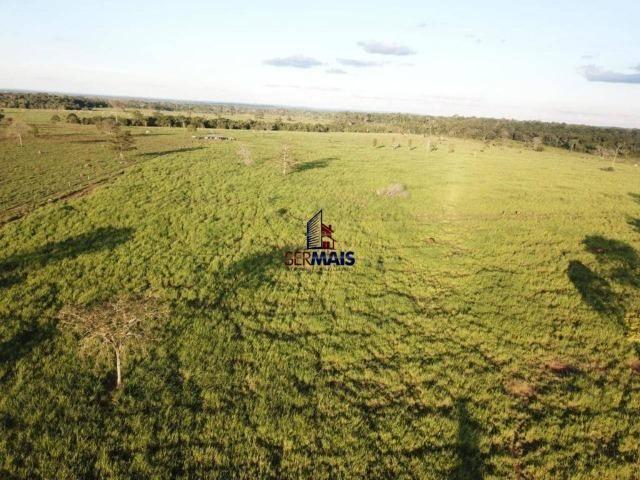 Fazenda à venda, 105 alqueires por R$ 2.625,000 - Alta Floresta D'Oeste/RO - Foto 6