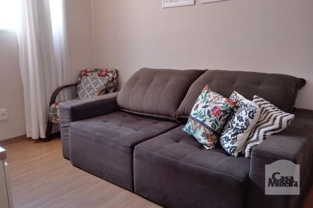 Apartamento à venda com 3 dormitórios em Caiçara-adelaide, Belo horizonte cod:264429 - Foto 3