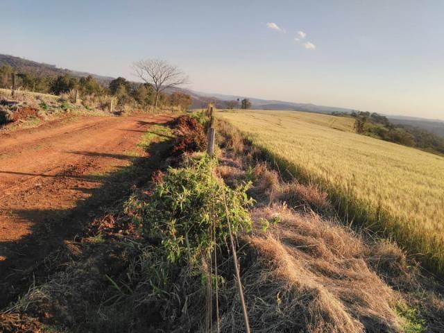 8271 | Fazenda à venda em ZONA RURAL, Cascavel - Foto 2