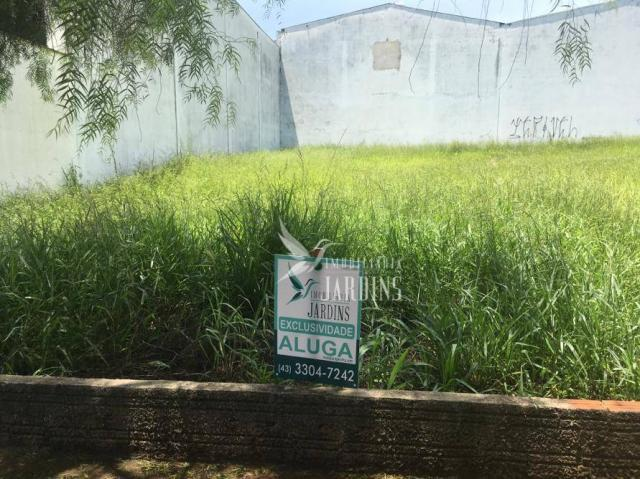 Terreno para alugar, 369 m² por R$ 2.000/mês - Portal de Versalhes 1 - Londrina/PR - Foto 4