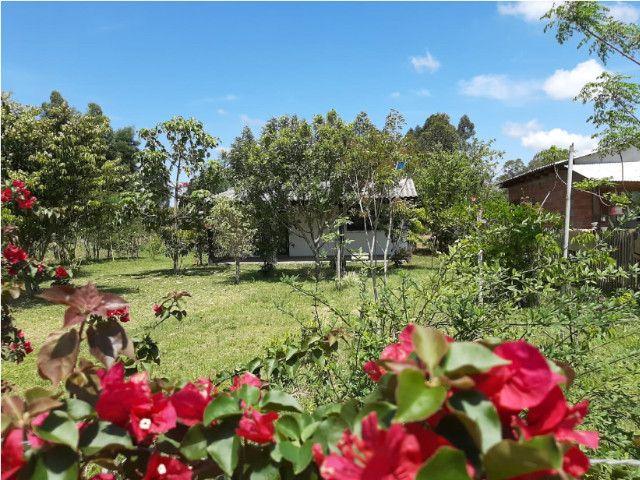 Velleda oferece sítio 1100 m², casa nova alvenaria, 1 km da RS-040 - Foto 8