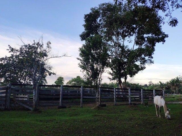 Fazenda em Porto Velho - Foto 5