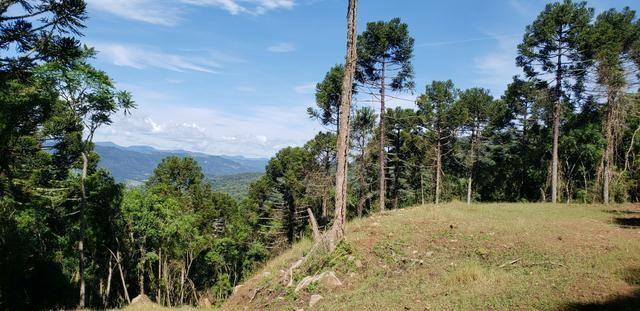 Terreno em Urubici/sítio em Urubici - Foto 2