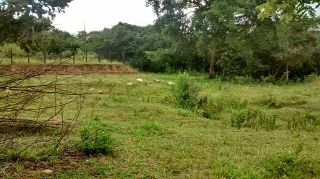 Loteamento Jardins dos Ipe ( Aparecida de Goiania)