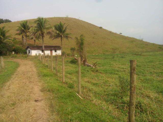 Linda fazenda em Cachoeiras de Macacu 20 alqueires oportunidade!!!! - Foto 9