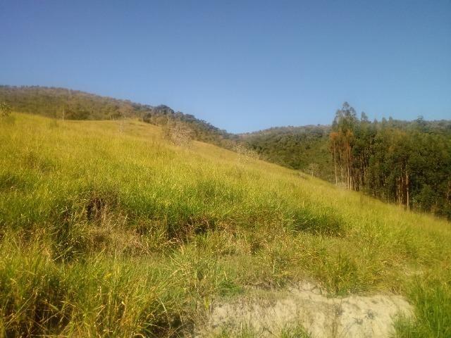 Fazenda 97 Alqs Na Região do Vale do Paraíba SP Negocio de oportunidade - Leia o anúncio - Foto 12