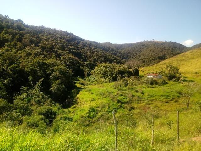 Fazenda 97 Alqs Na Região do Vale do Paraíba SP Negocio de oportunidade - Leia o anúncio - Foto 13